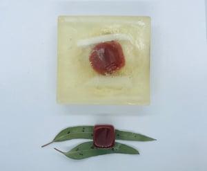 Carnelian Soap with Loofah
