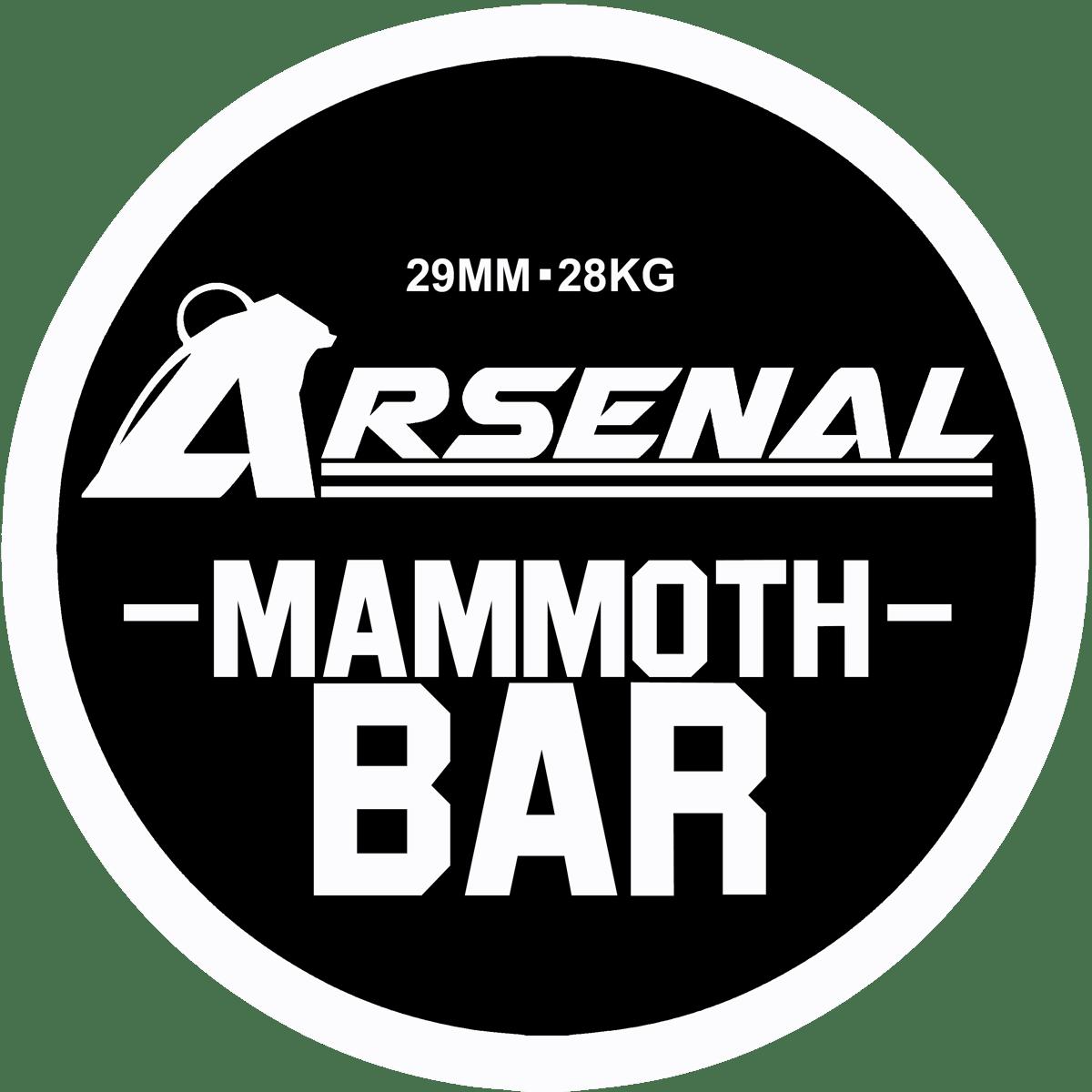 Image of Mammoth Deadlift Bar (Shipping Delays)
