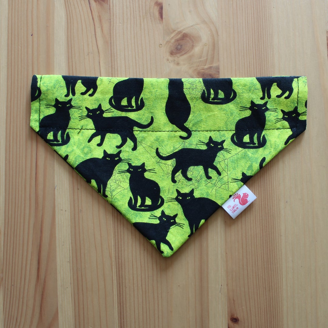 Image of Halloween black cat pet bandana