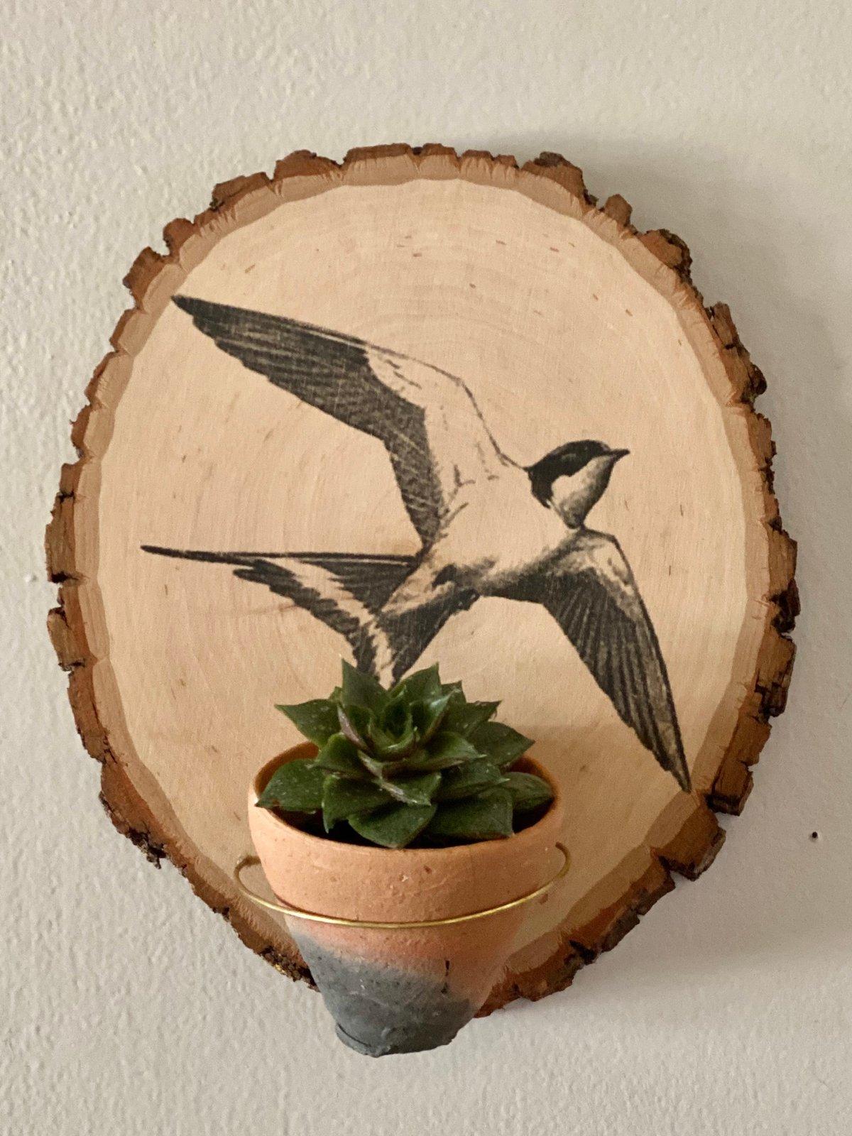Image of Wood Slice Hanging Planter