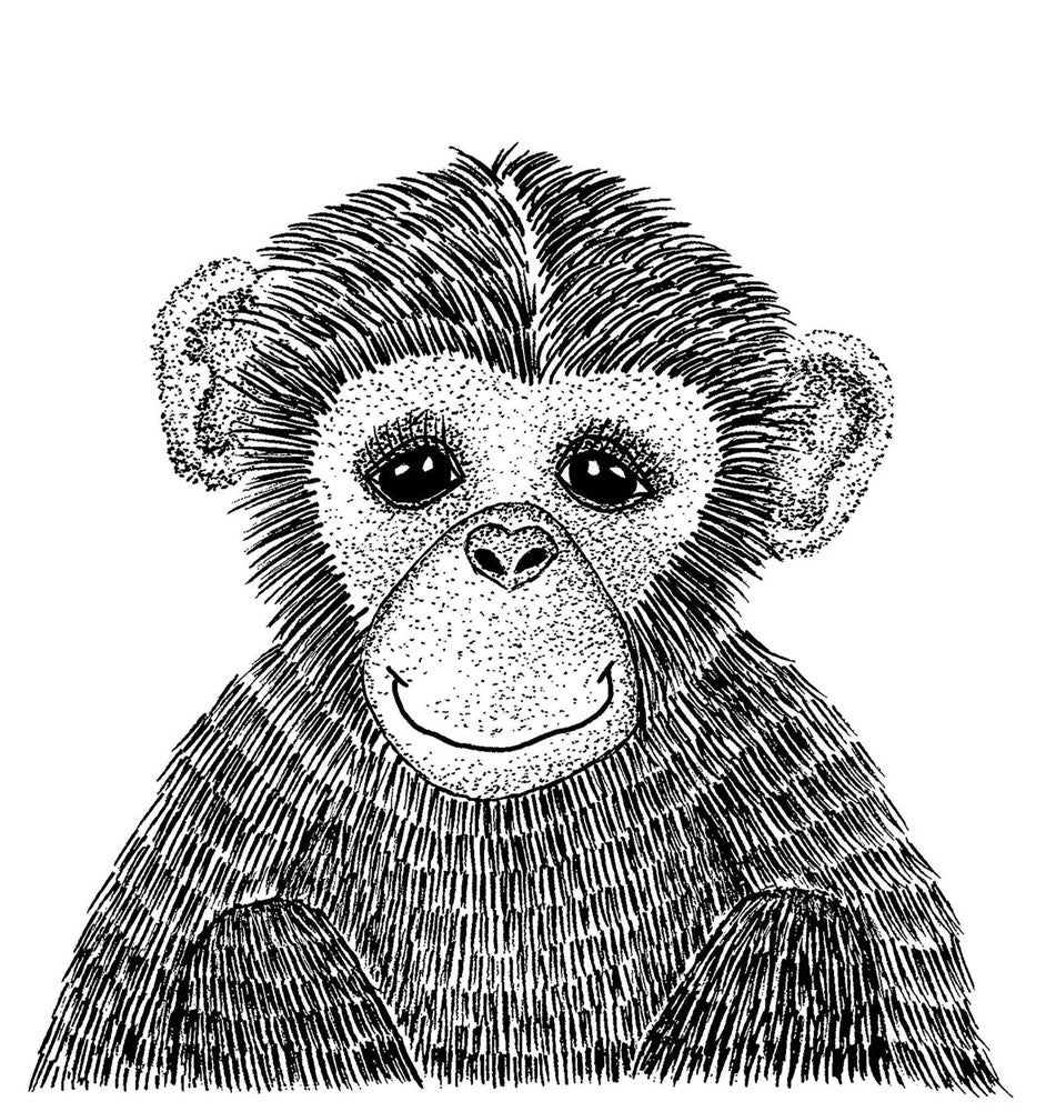 Image of Cheeky Monkey