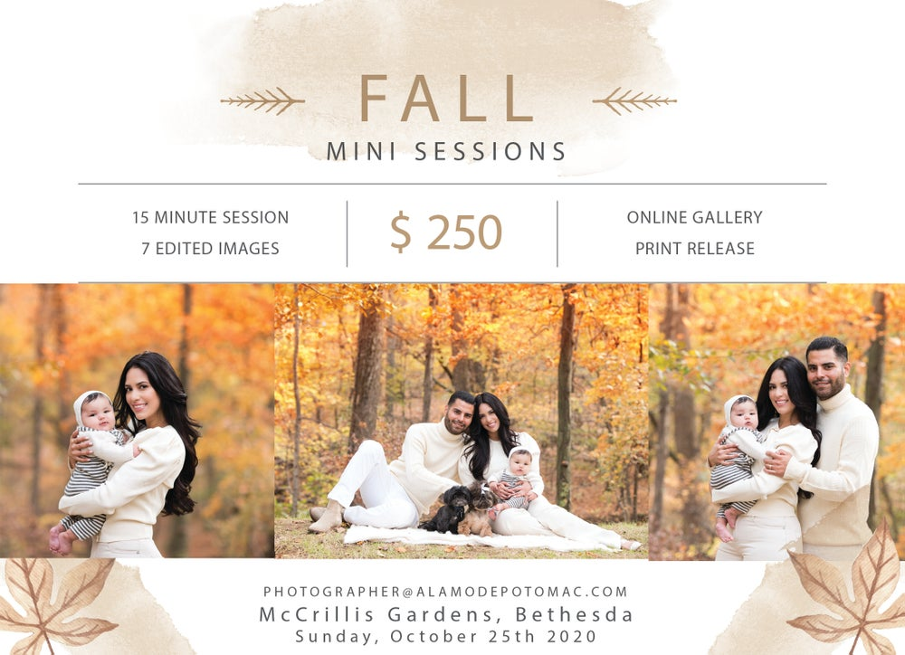 Image of Fall Mini Sessions - McCrillis Gardens, Bethesda - 10/25/20