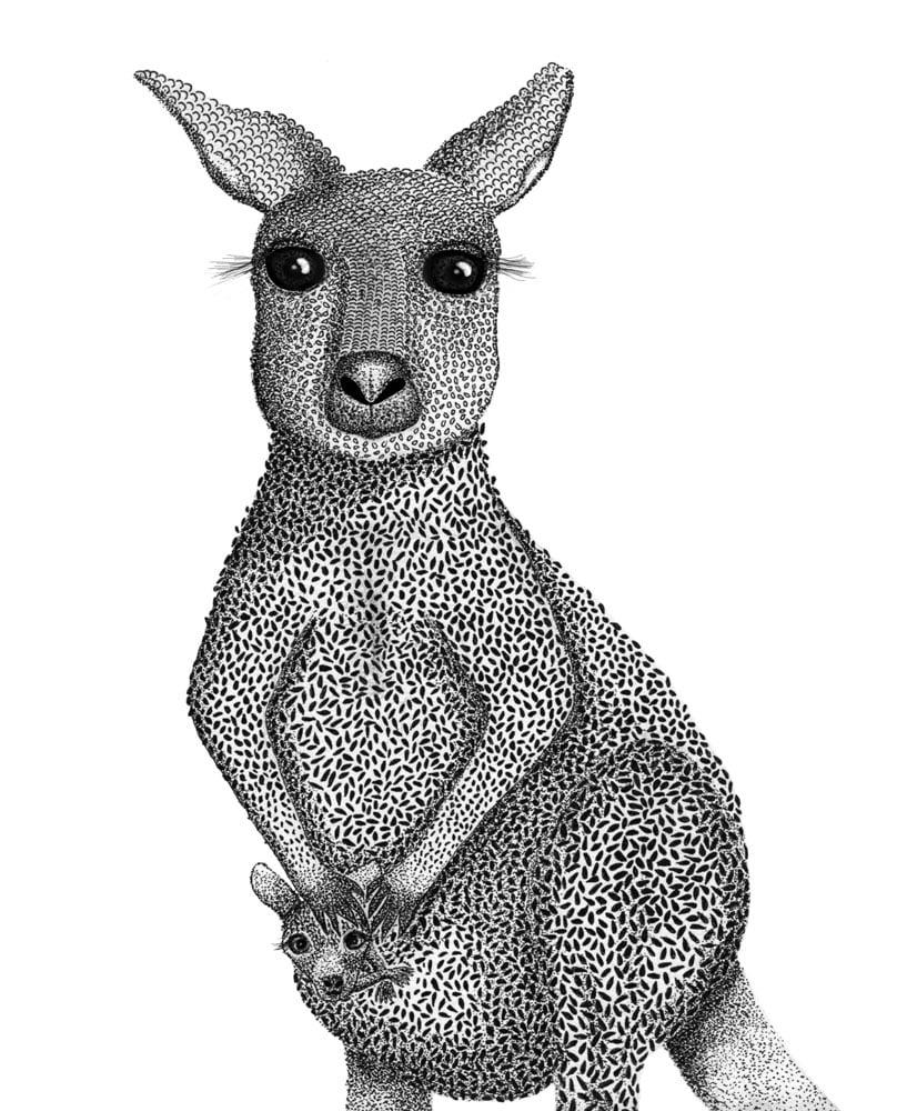 Image of Kangaroo with Joey
