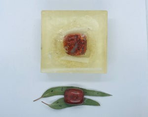 Red Jasper Soap with Loofah