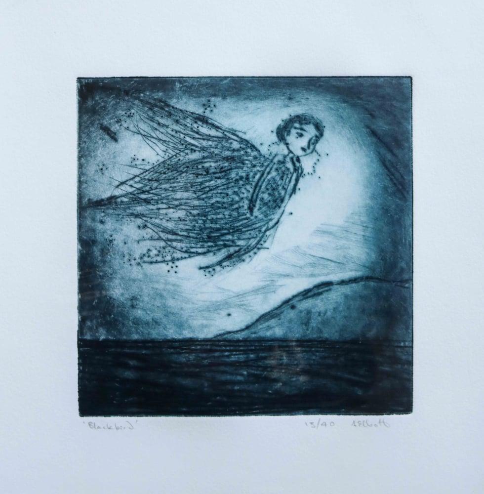 Image of Blackbird ~ Drypoint Etching