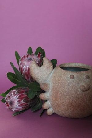 Image of Mrs. Crabby planter/vase