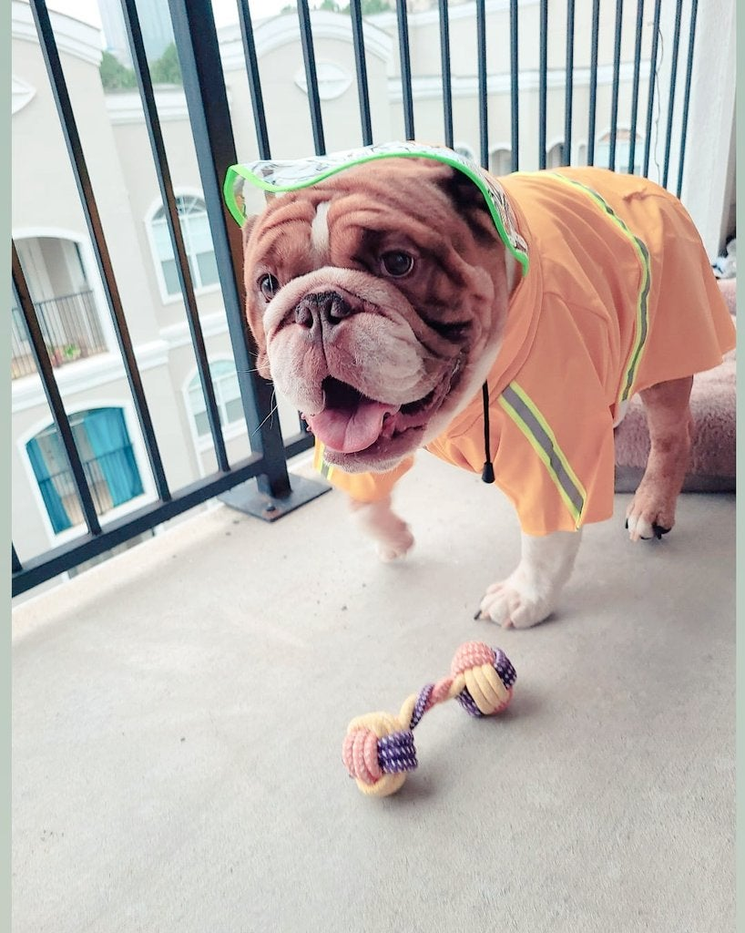 Image of Big Poppa Raincoat
