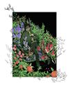 [IT] Eddie Flower Bed Print