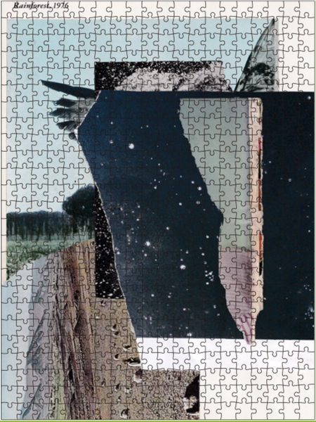 Image of Vincent Pacheco Puzzle