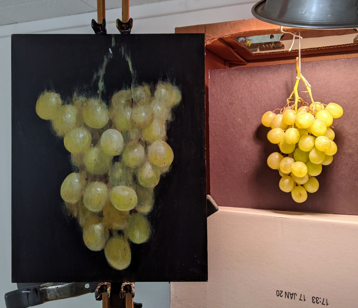 Image of Green Grapes, Suspended No. 5 (Original)