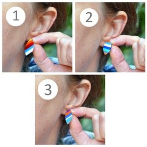 Image of Stripey Leaf Earrings