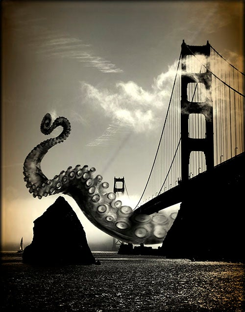 Image of Kerri Stephens: Golden Gate Print
