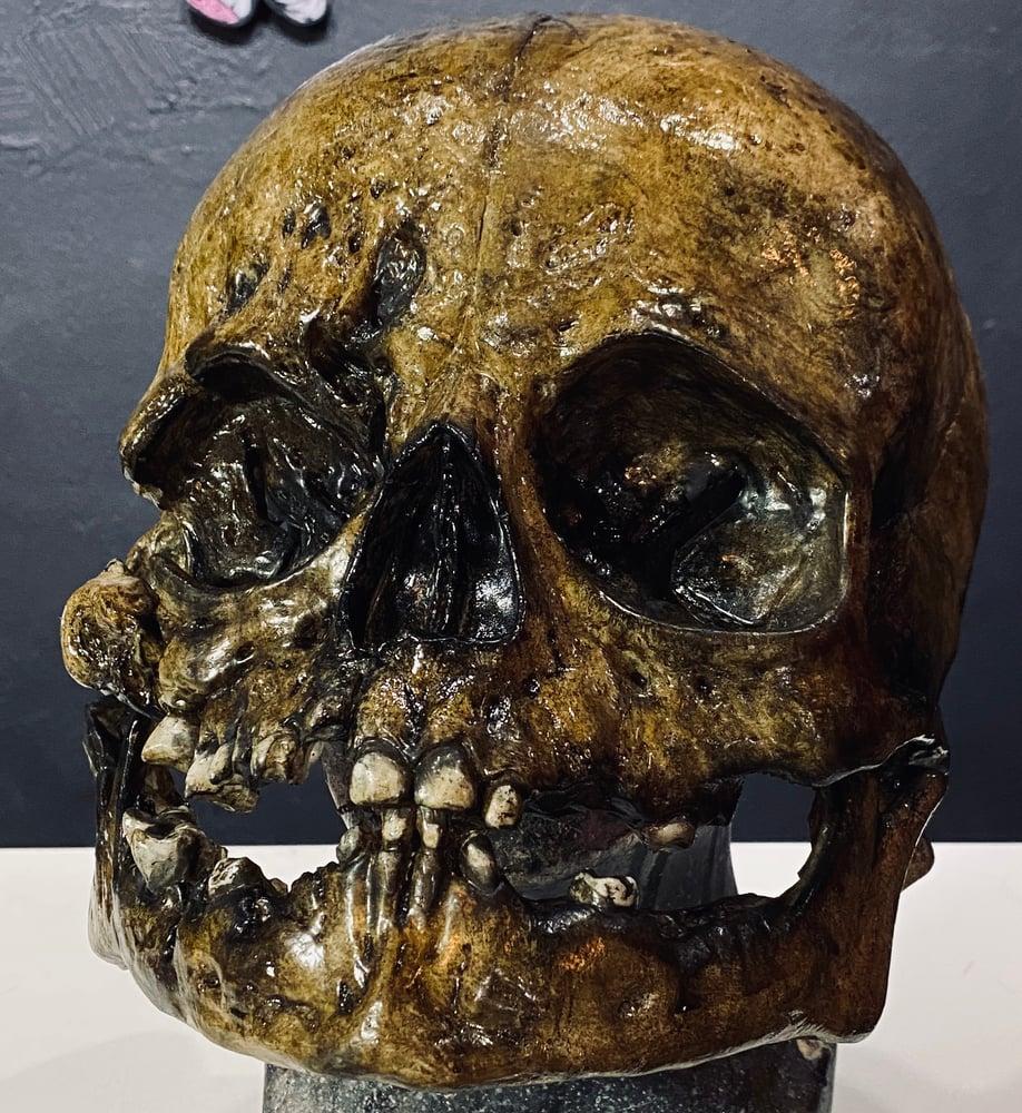 Image of Unborn - Diseased Fetal Skull Mask