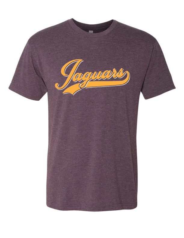Image of DC JAGUARS Varsity Football Tee