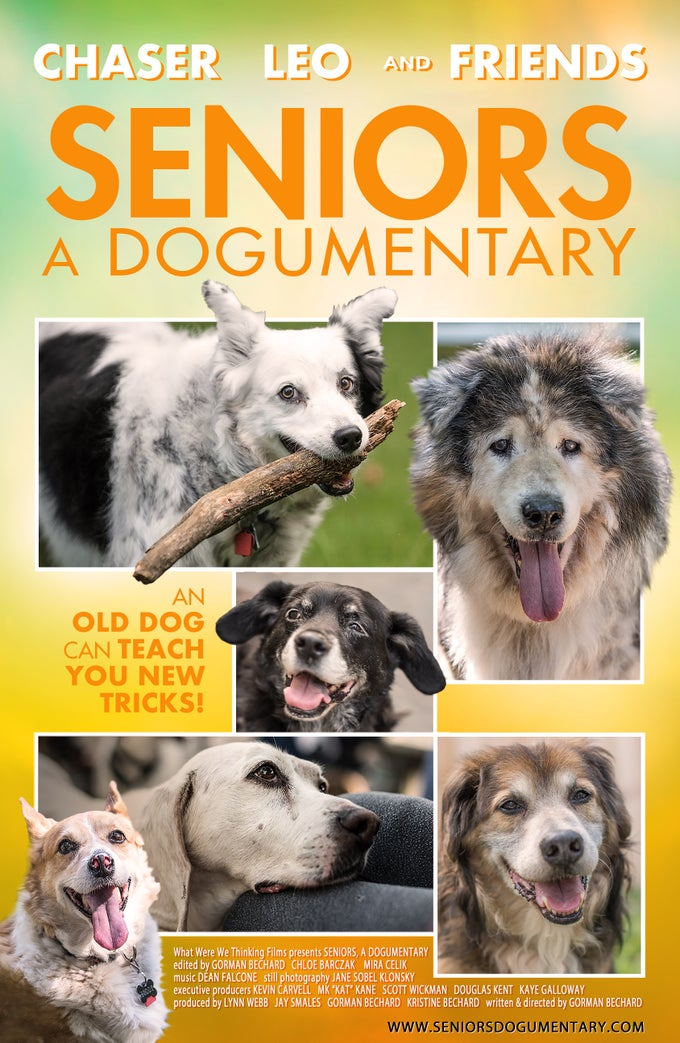Image of Seniors A Dogumentary movie poster