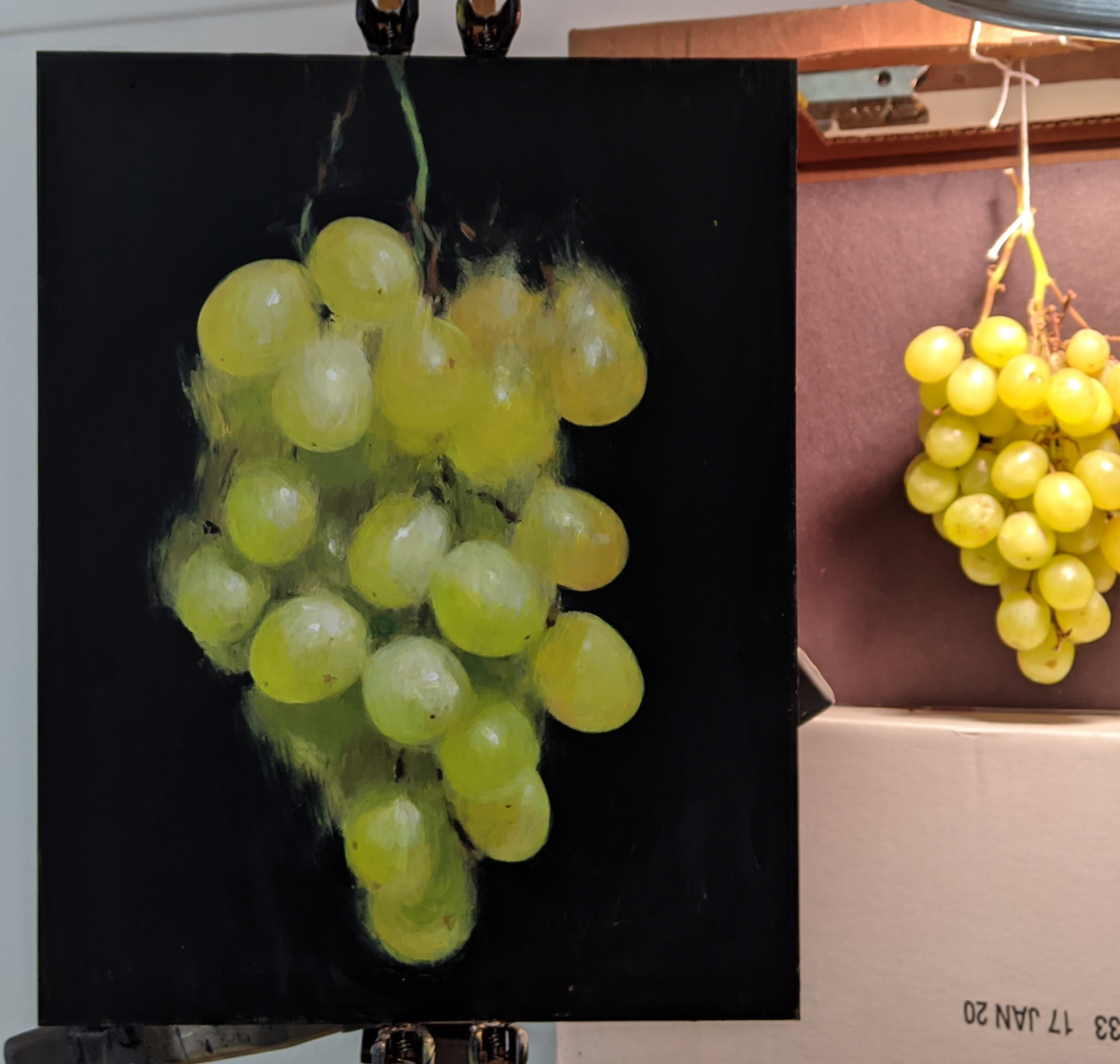 Image of Green Grapes, Suspended No. 6 (Original)