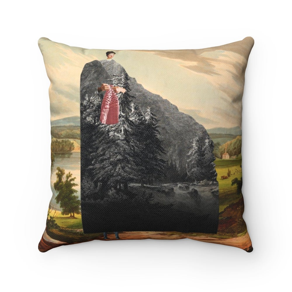 Image of Plate No.372 Throw Pillow