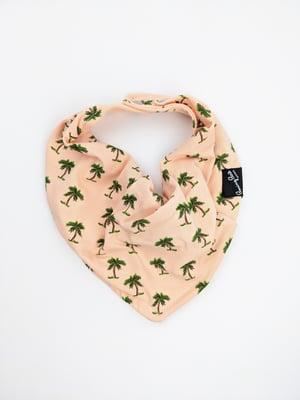Bibdana* Peachy Palm