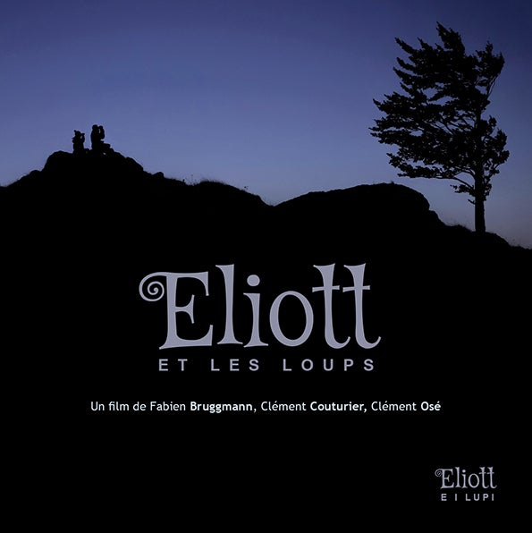 Image of DVD Eliott et les loups