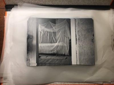 Image of Prints | Sorgenlos