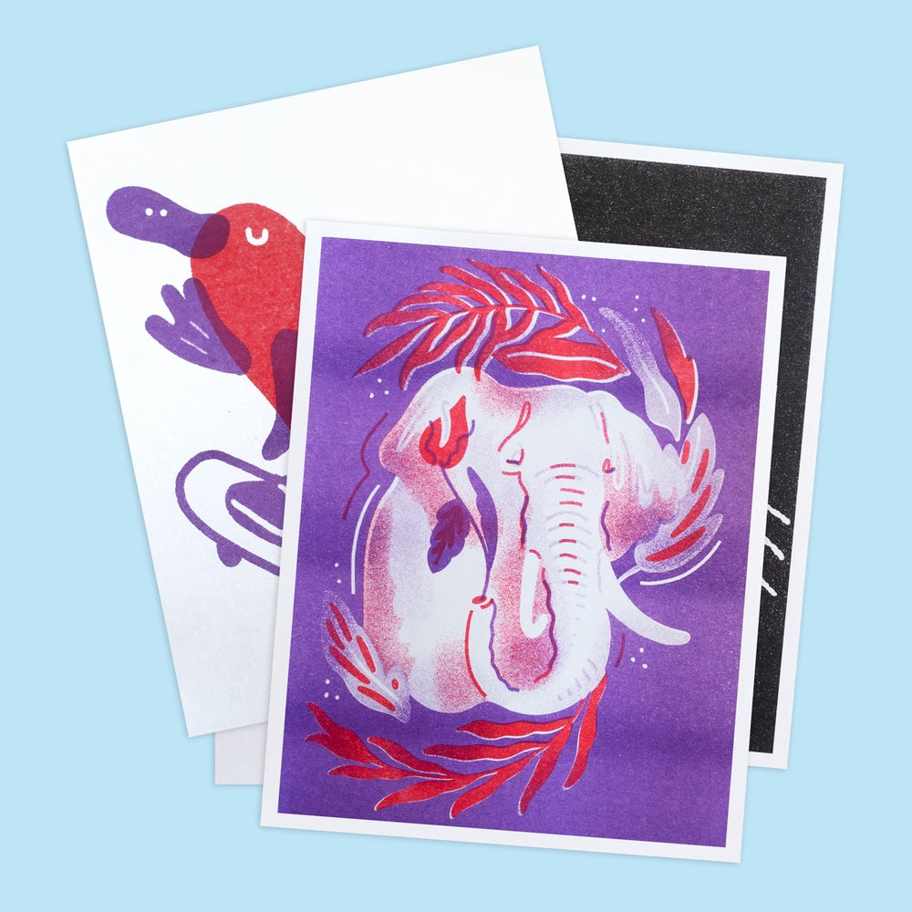 Image of Animal Risographs (set of 4)