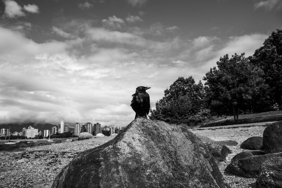 Image of Raven Rock, Vancouver
