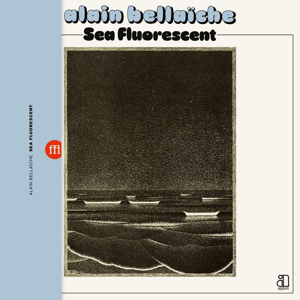 Image of Alain Bellaïche - Sea Fluorescent (FFL063)