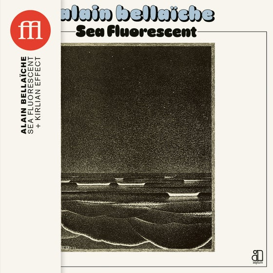 Image of Alain Bellaïche - Sea Fluorescent (FFL063CD)