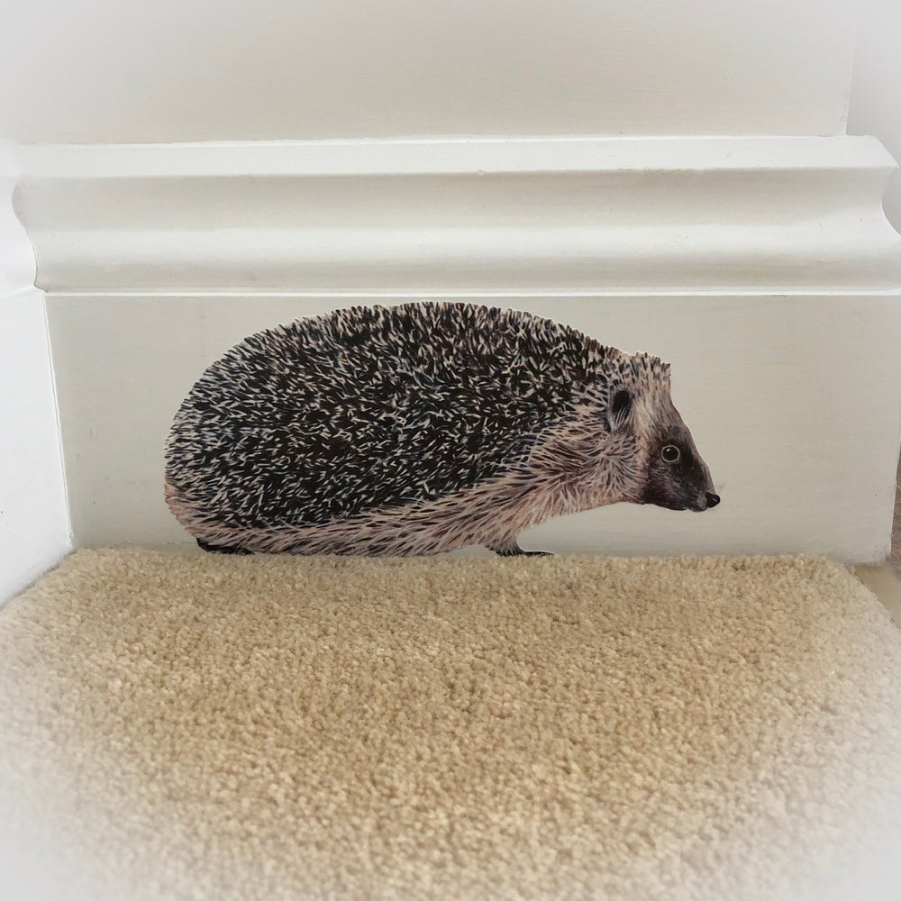 Image of Hedgehog ~ Wall sticker decal