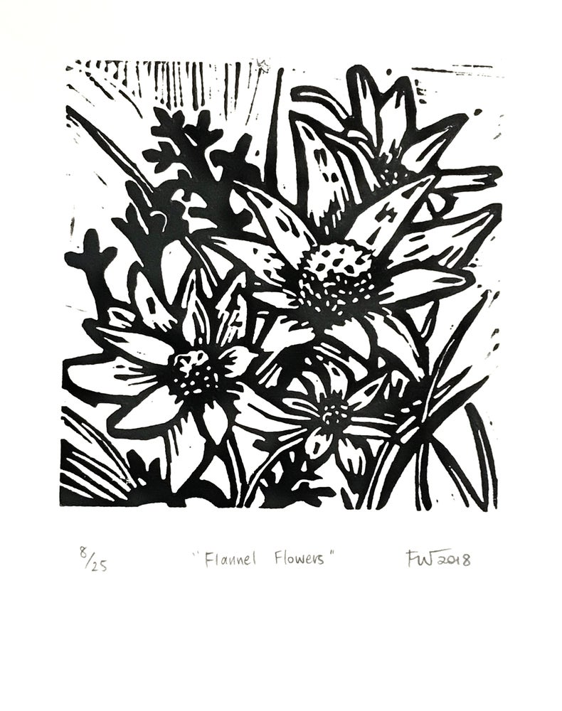 """Image of """"Flannel Flowers""""  2018"""