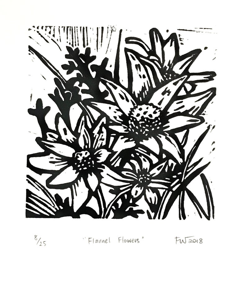 "Image of ""Flannel Flowers""  2018"