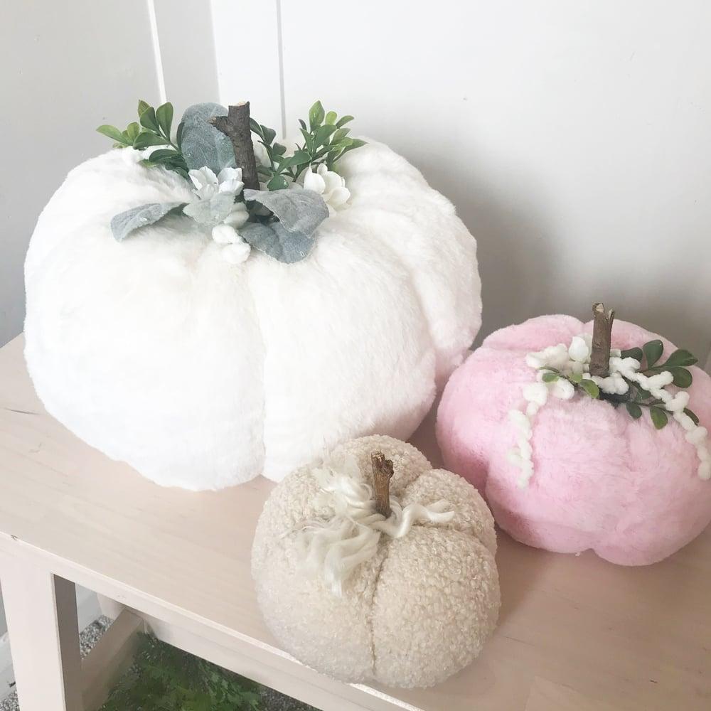 Image of Large Pumpkins