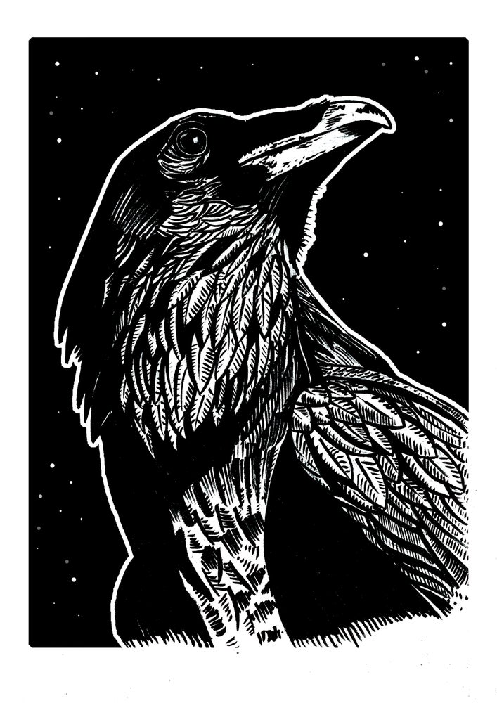 """Image of Raven One Art Print Signed A3 Size (16"""" x 12"""")"""