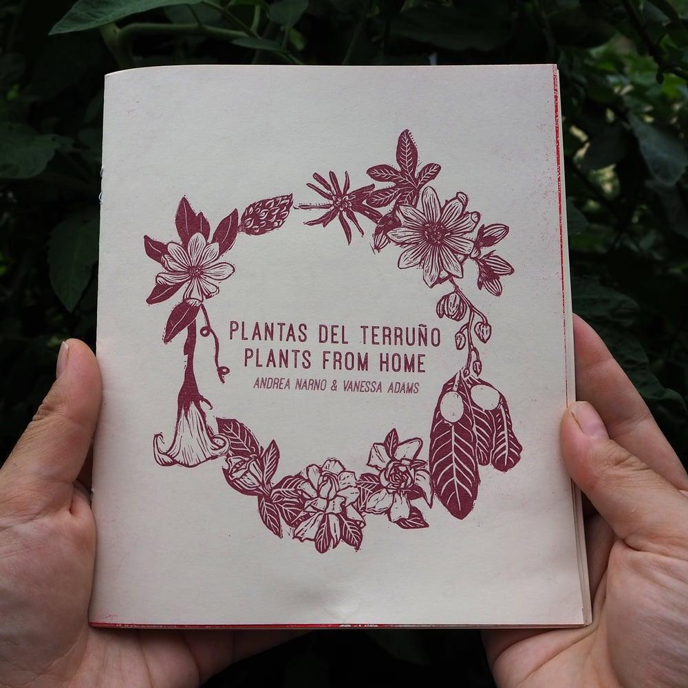 Image of Plants from Home / Plantas Del Terruño