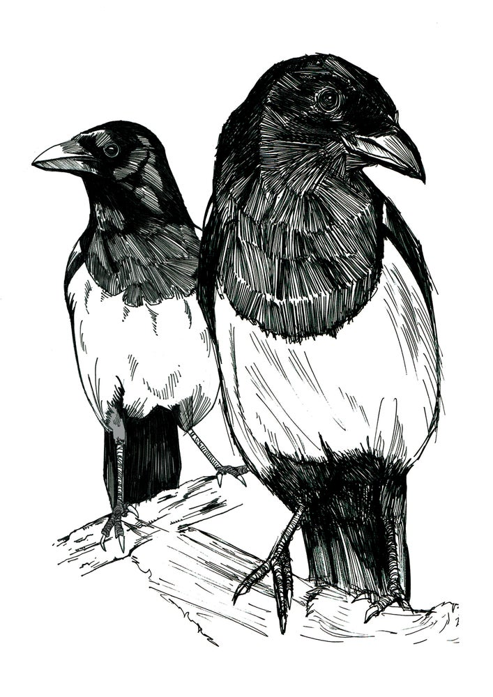"""Image of Two Magpies Art Print Signed A4 Size (12"""" x 8"""")"""