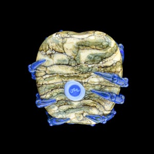 Image of XL. Dark Streaky Blue Crab - Flamework Glass Sculpture Bead