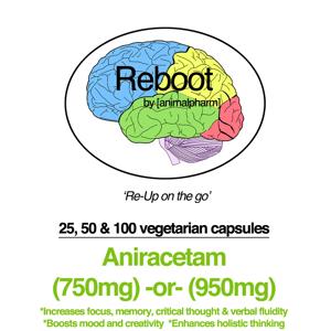 Image of ANIRACETAM (950MG + 750MG OPTION)  YOU CHOOSE