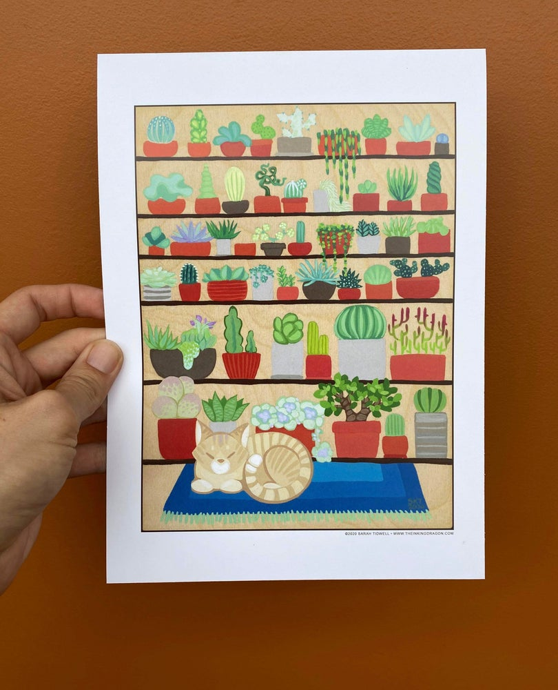 Image of The Succulent Collector