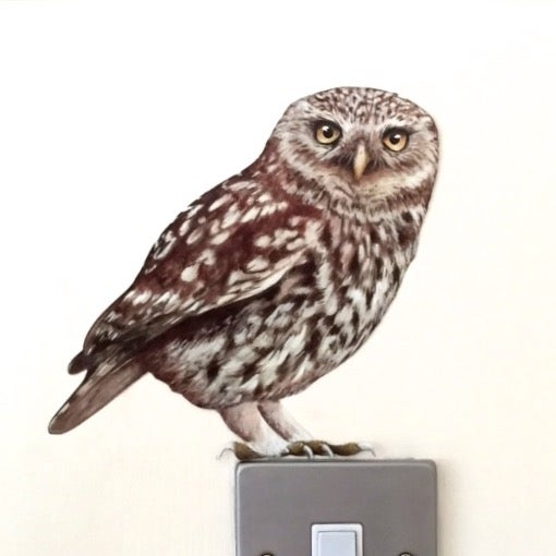 Image of Oswald Little Owl ~ Wall sticker decal