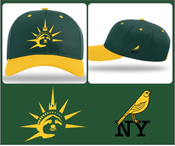 Image of New York Canaries Snapback Hat
