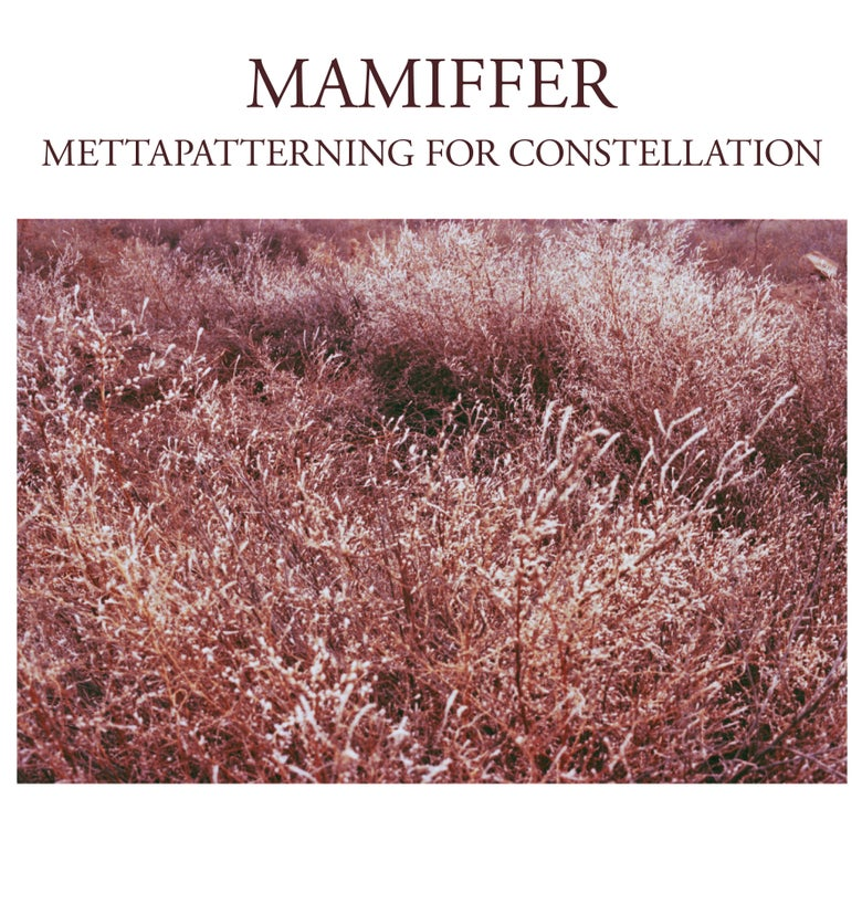 "Image of Mamiffer ""Mettapatterning for Constellation"" LP"