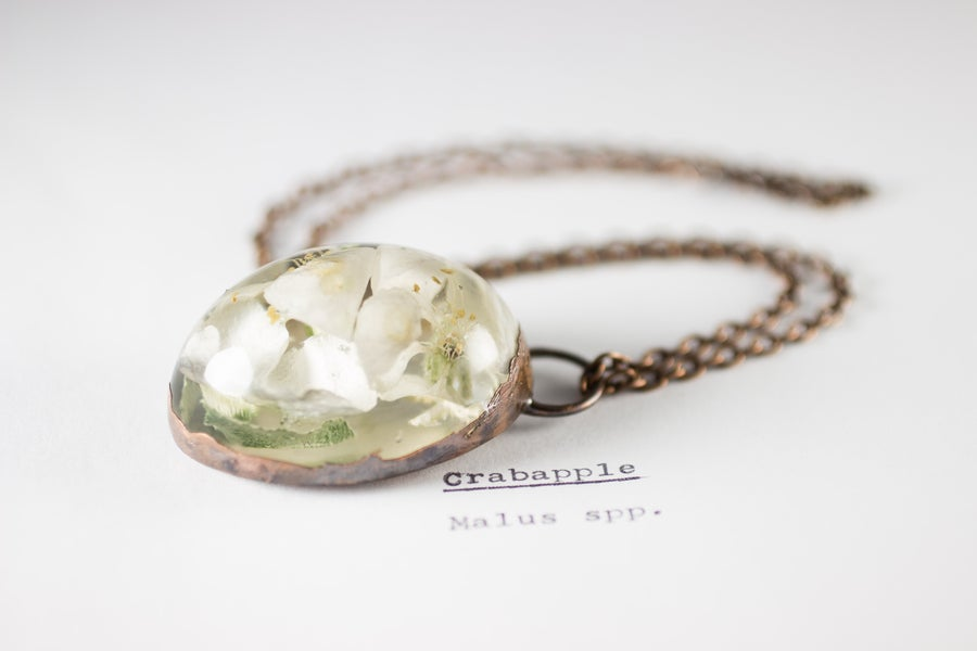 Image of Crab Apple (Malus) - Copper Plated Necklace #3