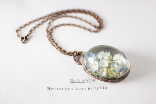 Image of Hydrangea (Hydrangea macrophylla) - Copper Plated Necklace #3