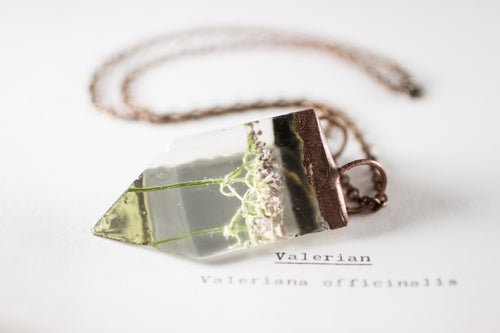 Image of Valerian (Valeriana officinalis) - Small Copper Prism Necklace #2
