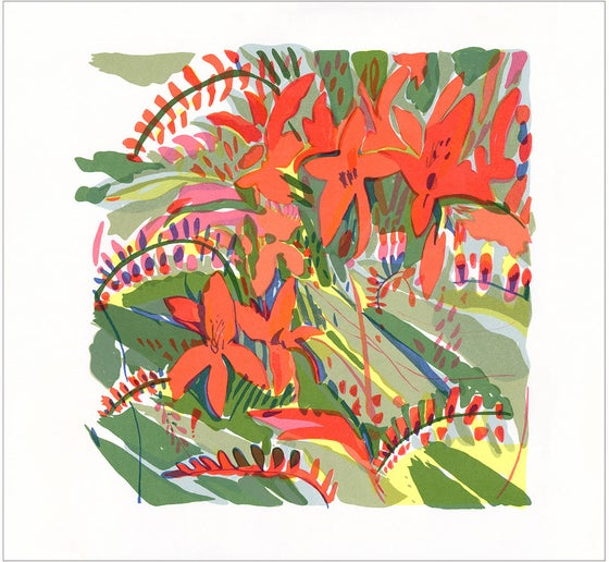 Image of Crocosmia Lucifer screen print