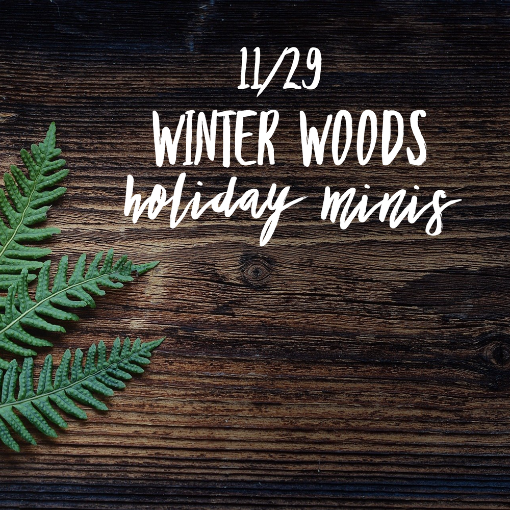 Image of 11/29 Winter Woods Holiday Mini (booking deposit)