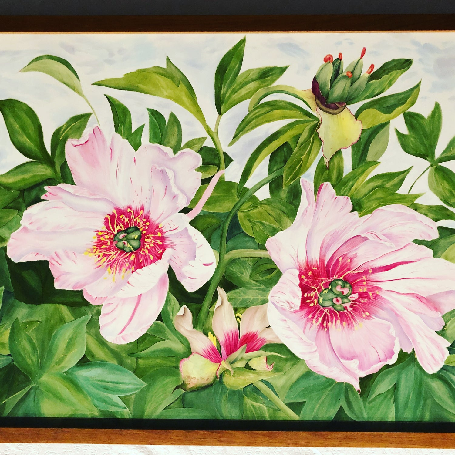 Image of Peony Pair with Carpels