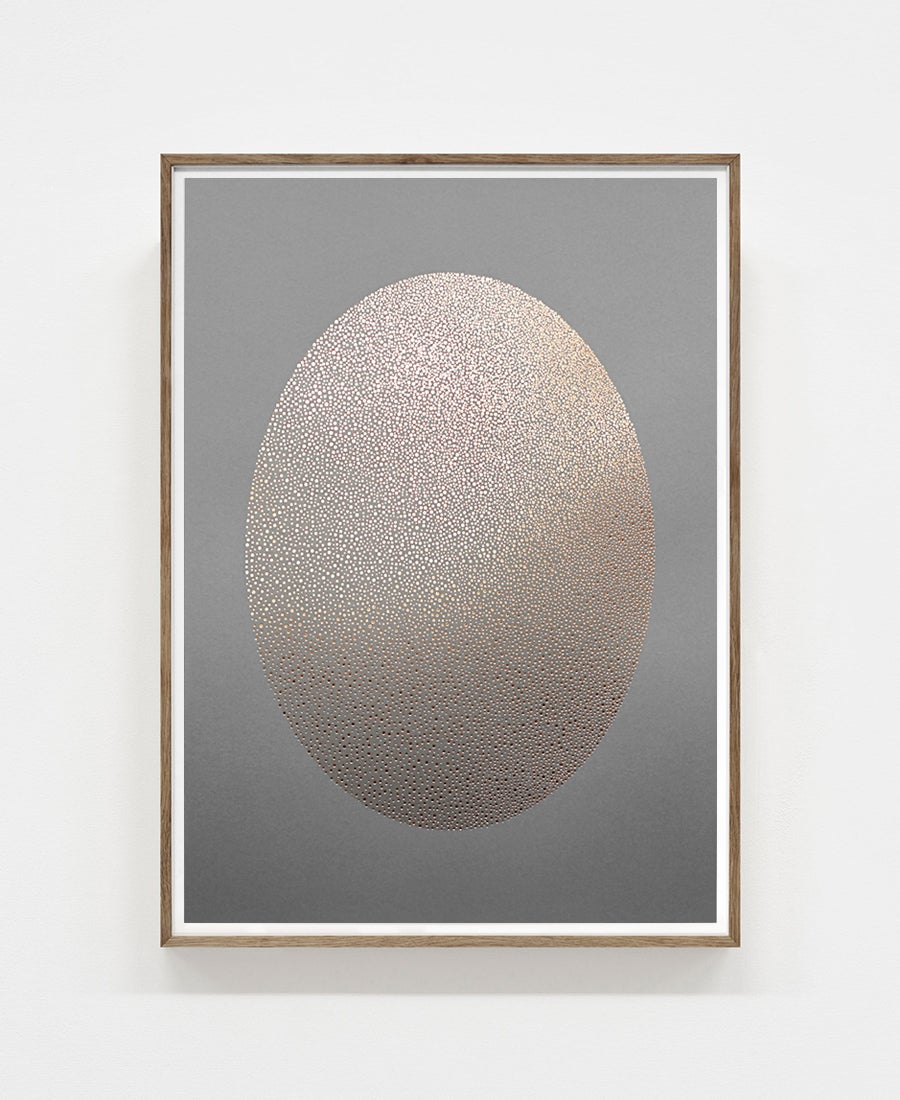 Image of Ellipse · Grey & Gold (on sale)