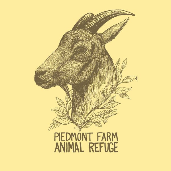 Image of Hercules Goat Women's T-Shirt (Banana Cream)