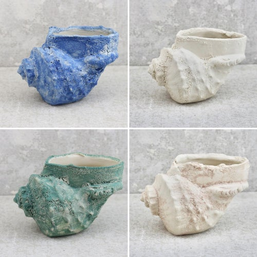 Image of The Salty Sea Air Collection -Conch Shell Vase- Choose your colour